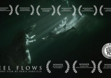 Feel Flows (dir. Paris Zarcilla)